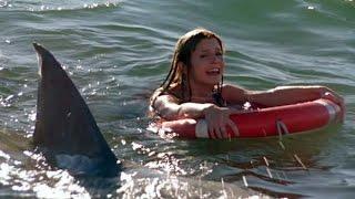 Дельфин  на пляже Анапа 13 06 2015г!