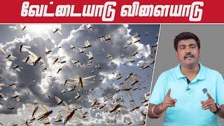 சூர்யா வெட்டுக்கிளி அட்டாக் | Locust Attack Explained