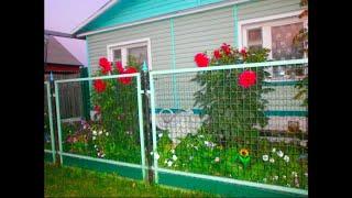 КРАСИВЕЙШАЯ ДАЧА ! КЛАССНЫЙ УЧАСТОК У ДОМА ! ИДЕИ ДЛЯ САДА ! #garden_ideas_basteln #oldenburgru#272