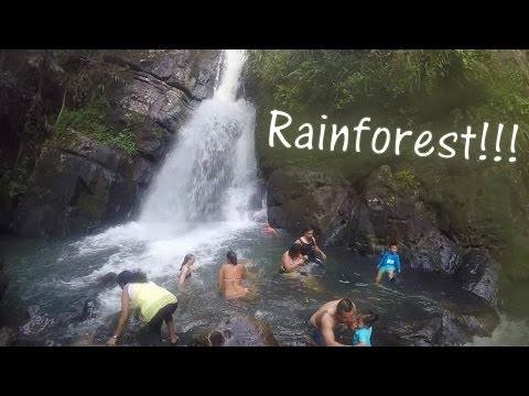 LOST IN THE RAINFOREST??? – My Trip to Puerto Rico – [9]