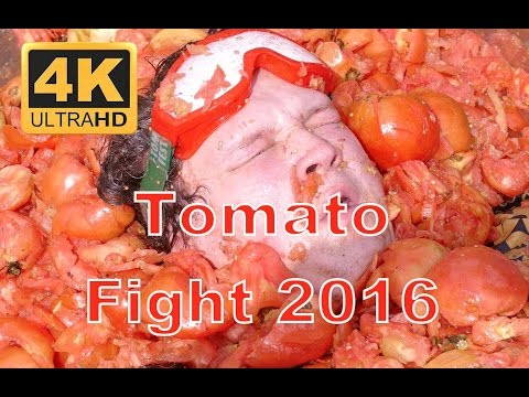 Ep. 872: Pittston Epic Tomato Fight (Vlog)