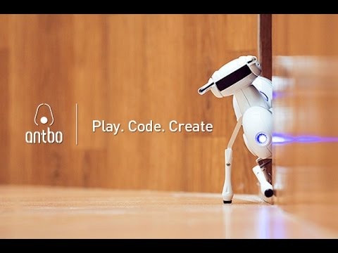 Antbo is a robot insect companion anyone can build