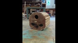Skull bird house for the 2015 summers woodworking birdhouse contest entry