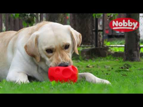 NOBBY - VIDEO TEST & REVIEW w/Marley (CZ & HD)