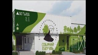 В Ростове строят центр массовой стерилизации бездомных животных