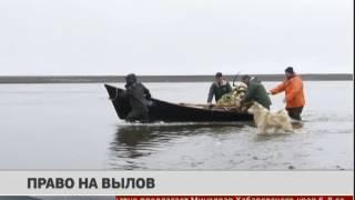 Право на вылов. Новости. 02/09/2016. GuberniaTV