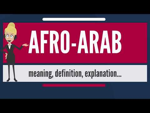 What is AFRO-ARAB? What does AFRO-ARAB mean? AFRO-ARAB meaning, definition & explanation