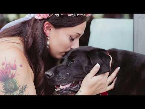 Cachorro à beira da morte leva dona até o altar em seu casamento