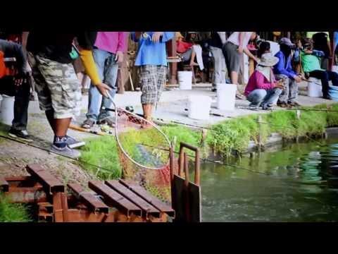 บ่อตกปลาเอามันส์ แม็ชท์ 100,000 ครั้งที่ 2