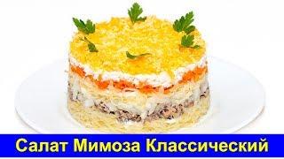 видео салат мимоза