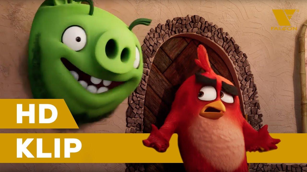 Angry Birds ve filmu 2 (2019) Exkluzivní ukázka z filmu | CZ dabing