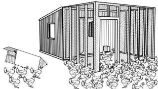 Diy Chicken Coop Plans - Learn Easy Chicken Coop Ideas Diy Plans Guide And Designs