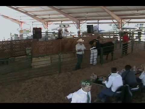 The 2013 Calaveras County Fair and Frog Jump Jubilee Livestock Auction Part Two