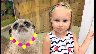 Алиса кормит СУРИКАТОВ в зоопарке !! Алиса растеряла всех ГУСЕНИЦ !!! Контактный зоопарк для детей