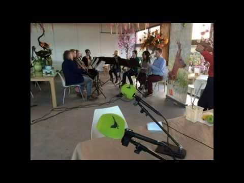 2015 03 01 Vroege Vogels Capriccio 8 Live