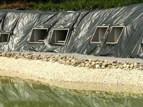 Bovengronds begraven in Breda