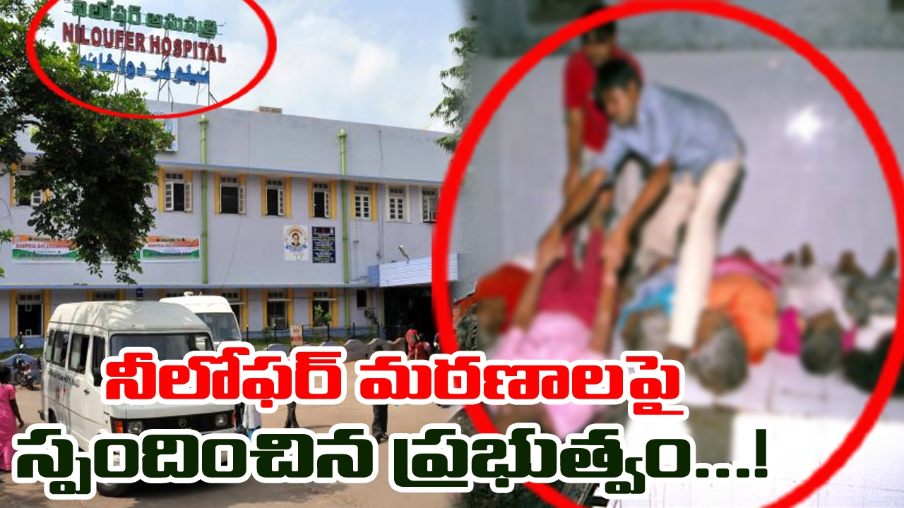 Government Reacts On Women Deaths In Niloufer Hospital | Hydearabad | TV5 News