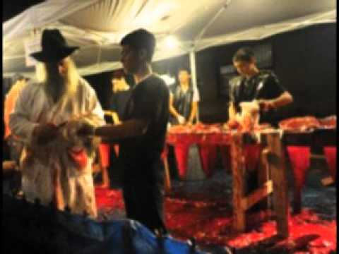 Jewish Animal Sacrifice in America's Streets Protected by Government