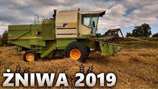 Żniwa 2019 ✔🌾 Koszenie Pszenżyta ✔ FORTSCHRITT E514 & New Holland L100
