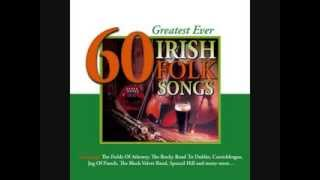 Jim McCann - Will Ye Go Lassie Go