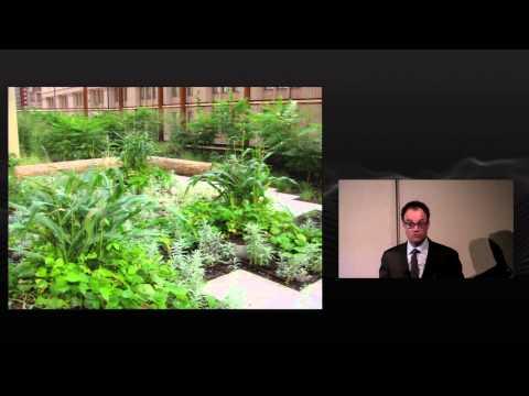 Daniels B.E.S.T. Lecture: Green Roof Gurus Panel