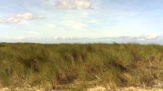 Bungalowpark St. Pierre in Nieuwvliet, vlakbij zee!