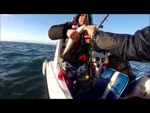 Fishing Kilmore Quay Harbour Wexford 30. Nov