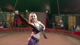 Восточный танец со змеёй. Выступление на Арене Цирка Шапито. 10. 2017г