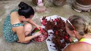 MariolaWpodrozy Vlog#40 Pytony za ścianą Can Tho Nga Bay Wietnam