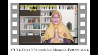Sistem Reproduksi Manusia seg3 | SMP Biologi | Pasti Bisa.
