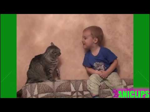 Baby talking to CAT