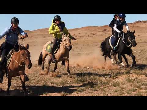Equine Info Exchange - Trail Riding