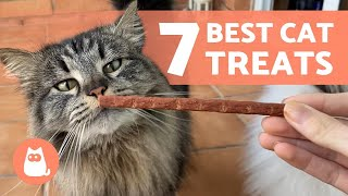 7 TREATS for CATS  How to Reward Your Feline