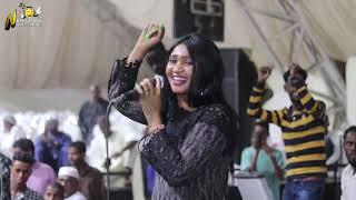 عشة الجبل - بشيركي  - واقفه صبة - اغاني سودانية 2020