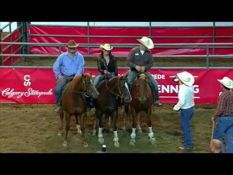 2017 Calgary Stampede 14 Class Team Cattle Penning Champions