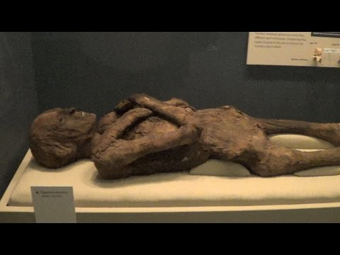 Smithsonian National Museum of Natural History -- REAL USA Ep, 167
