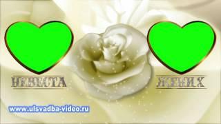Футаж Свадебные рамки жених и невеста хромакей