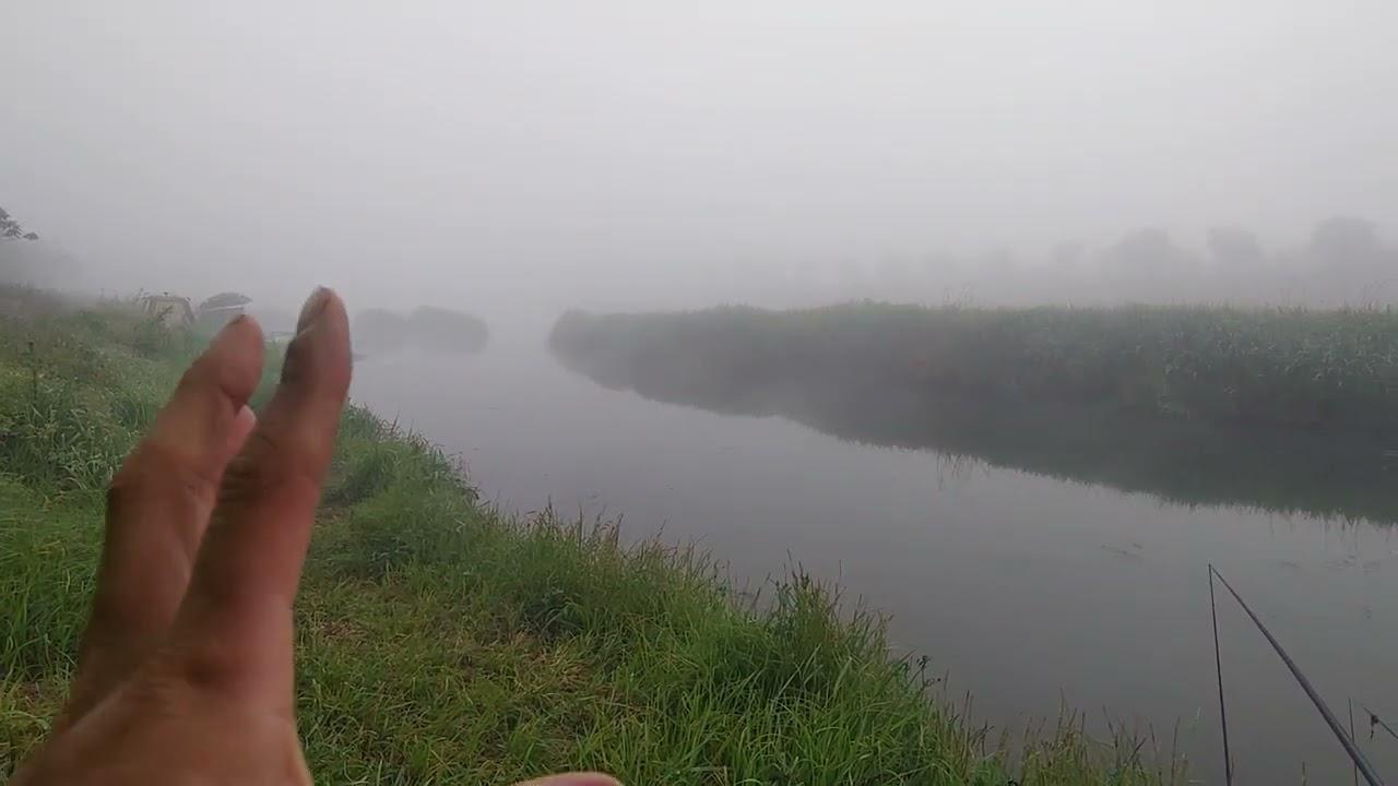 [실시간 정보]_ 신양수로, 무한천 / 바람 멈추었으나 청태가 많고 조황 극도로 부진..