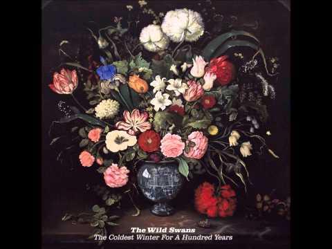 The Wild Swans + Care + Paul Simpson collab/s + Paul Simpson
