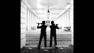 Frohlich Flute Duet in C Minor - World premiere recording