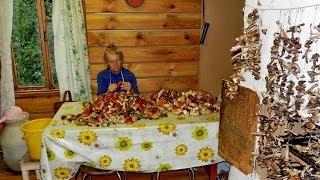 Икра грибная видео рецепты от бабки (Борисовны)