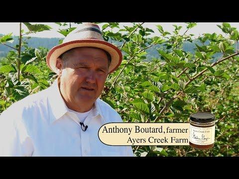 Ayers Creek Farm Organic Fruit Preserves