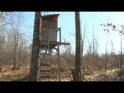Northwoods Adventure: Deer Hunting Opening Weekend