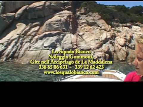 lo squalo bianco noleggio gommoni in Sardegna