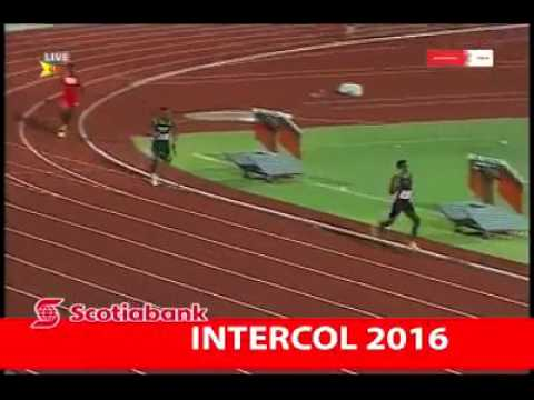 Intercol Games  Grenada 2016