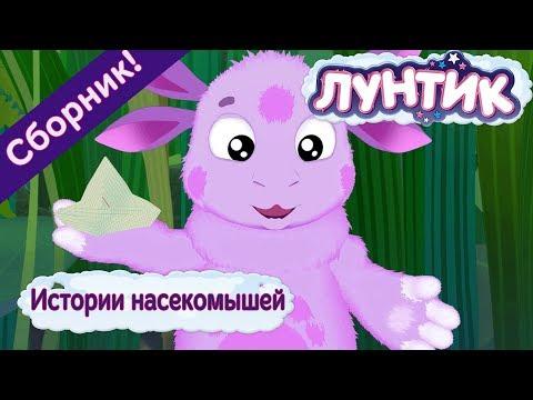 Истории насекомышей 🐞 Лунтик 🐞 Сборник мультфильмов