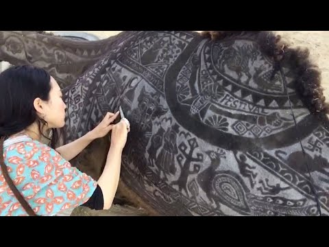 Tourist Creates Incredible Art On Camel Coat