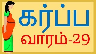 Pregnancy |Tamil | Week by Week | Week 29