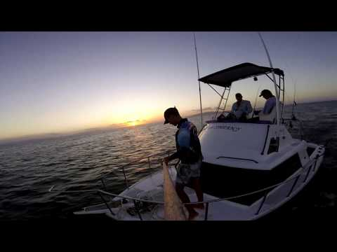 Townsville North Queensland Fishing