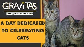 Gravitas: International cat day